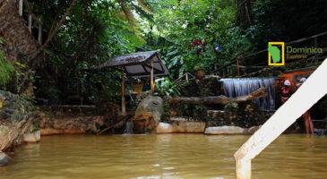 Screws Sulphur Spa Dominica