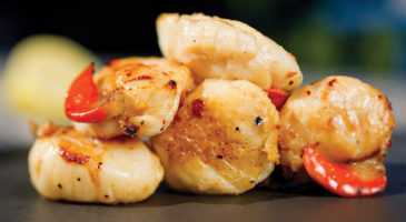 Scallop Fish